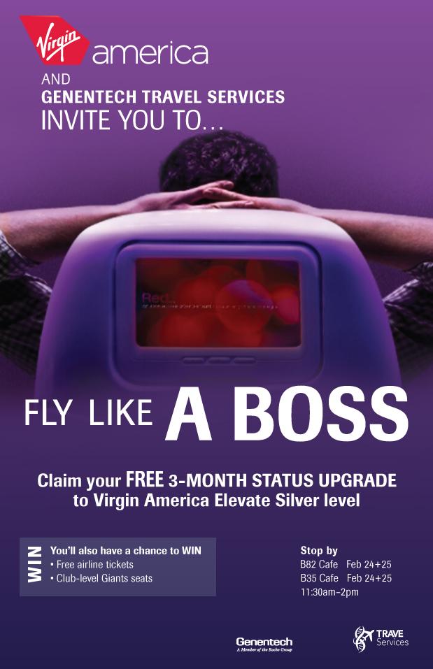 Virgin America poster