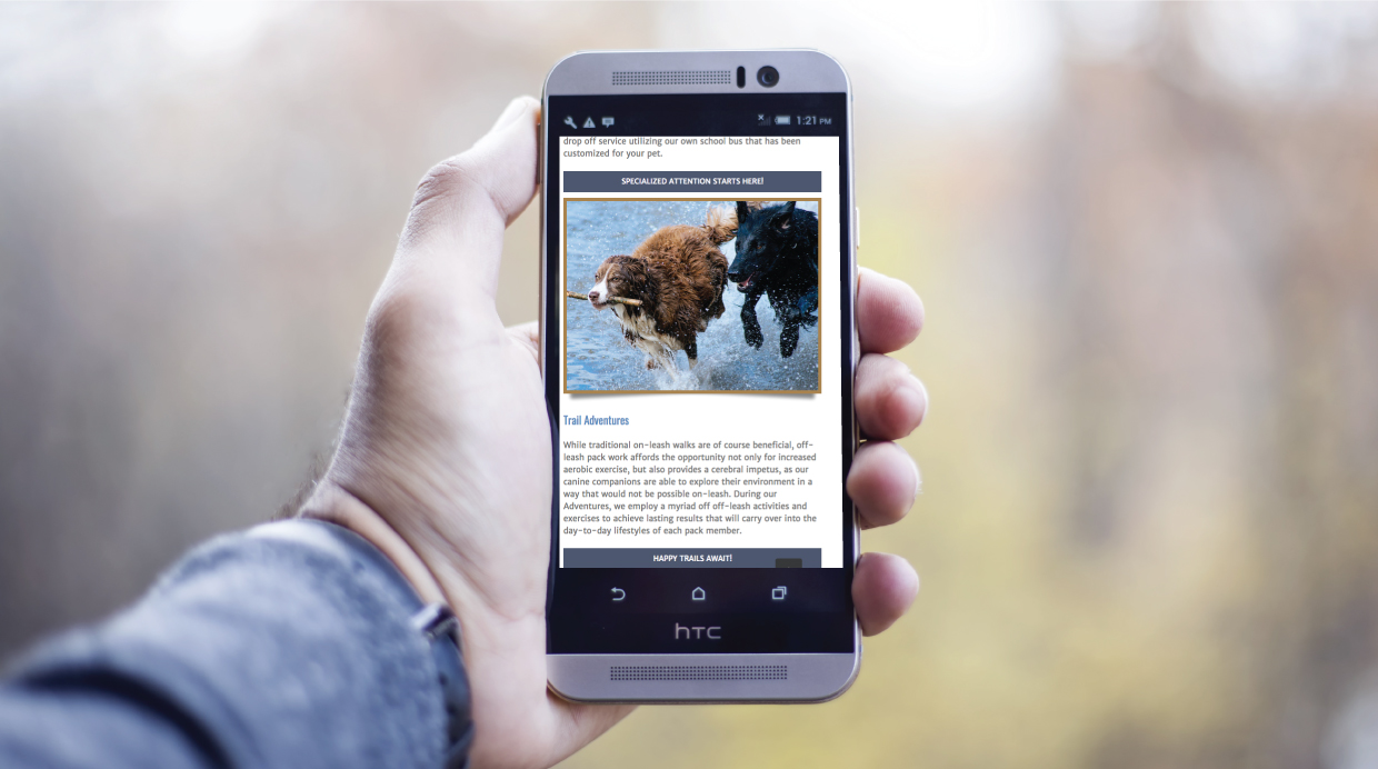 iphone example of Waggin website